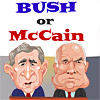Bush or McCain?