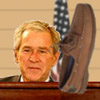 Hit Bush With Shoe