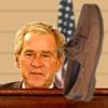 Hit Bush With Shoe