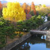 Jigsaw: Kyoto Nijo Garden