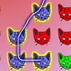 Kitten Match