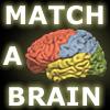 Match-A-Brain